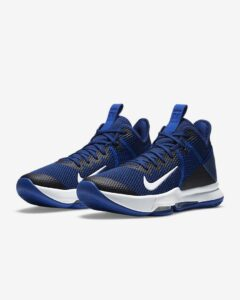 Nike LeBron Witness 4 Review: Pair