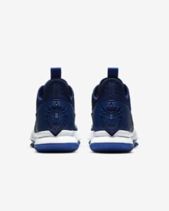 Nike LeBron Witness 4 Review: Back