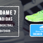 Dame 7 Review