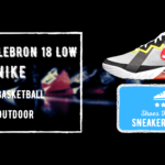 LeBron 18 Low Review